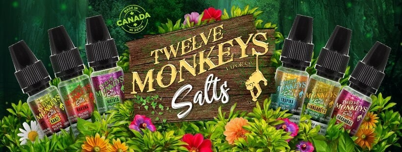 kanzi salt twelve monkeys